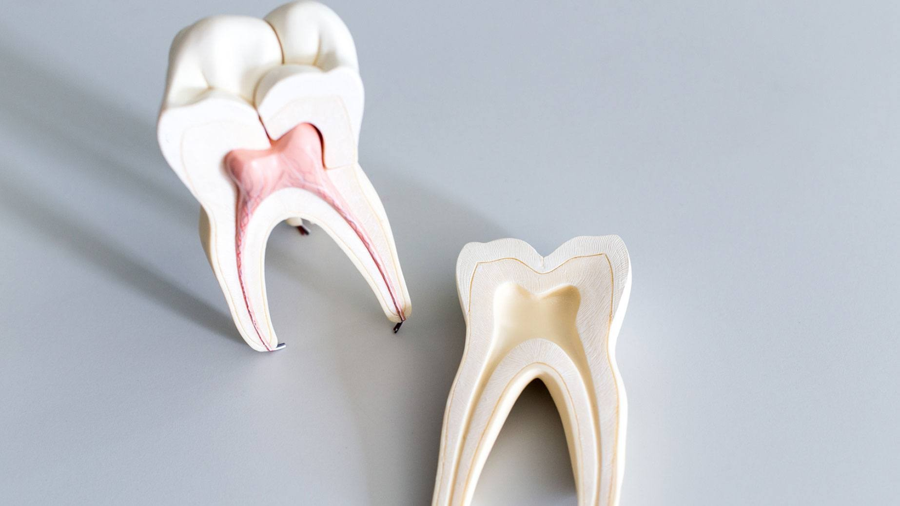how-to-take-care-of-your-teeth